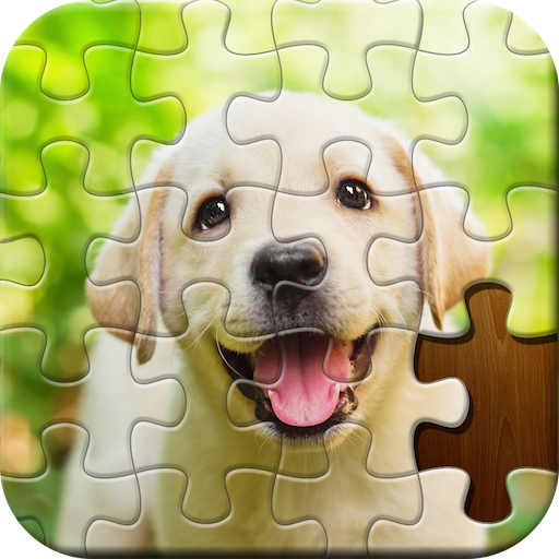 Jigsaw Puzzle Mod apk download – Mod Apk 425033 [Unlimited money] free for Android.