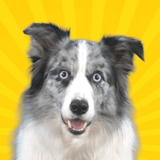 Real Pets™ by Fruwee Mod apk download – Mod Apk 296 [Unlimited money] free for Android.