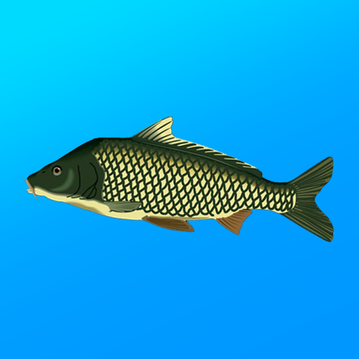 True Fishing. Fishing simulator Mod apk download – Mod Apk 1.14.3.654 [Unlimited money] free for Android.