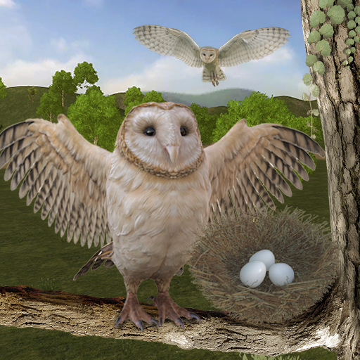 Wild Owl Bird Family Survival: Bird Simulator Pro apk download – Premium app free for Android 2.8