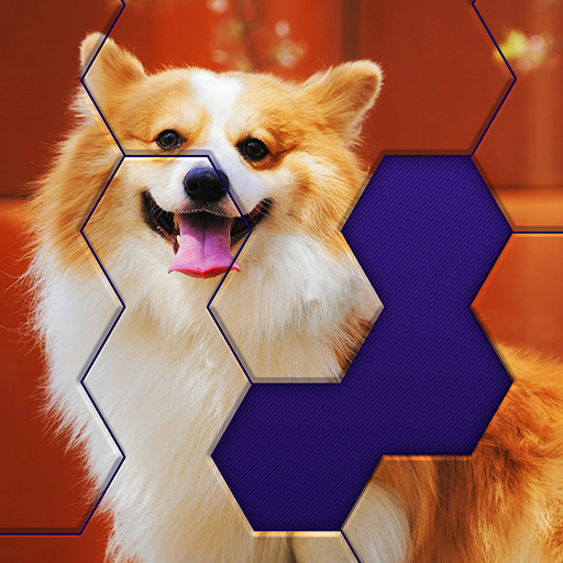 Hex Block Jigsaw Pro apk download – Premium app free for Android