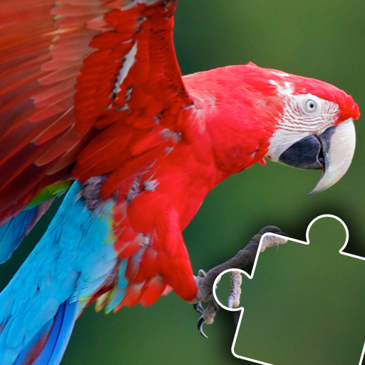 Kids animal jigsaw puzzles Pro apk download – Premium app free for Android