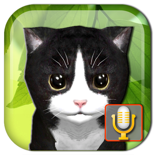 Talking Kittens virtual cat that speaks, take care Pro apk download – Premium app free for Android