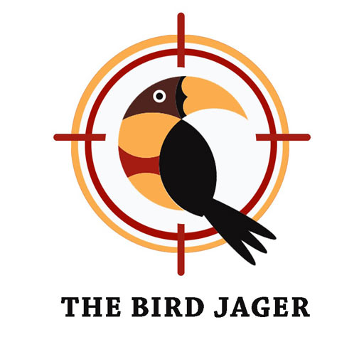Bird Jager Mod apk download – Mod Apk 1.3 [Unlimited money] free for Android.